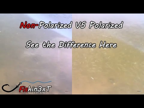See Underwater With Polarized Glasses