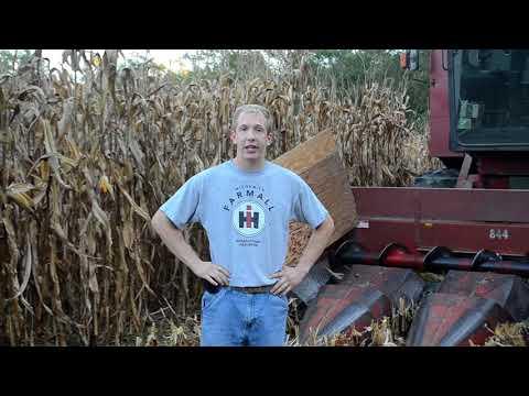 Illinois Farming   Illinois Bicentennial Celebration
