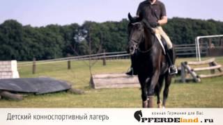 Конноспортивный лагерь Мюнстерланд и Мюнстерланд Интенсив