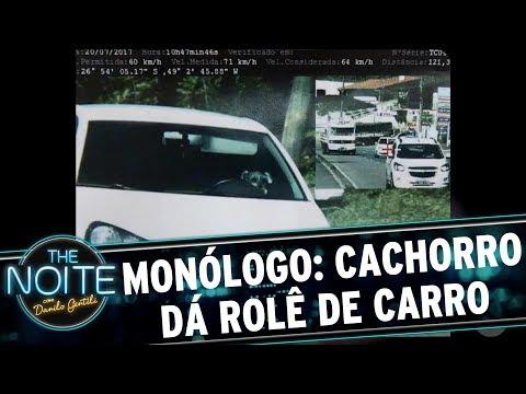 Monólogo: Cachorro dá rolê de carro | The Noite (27/07/17)