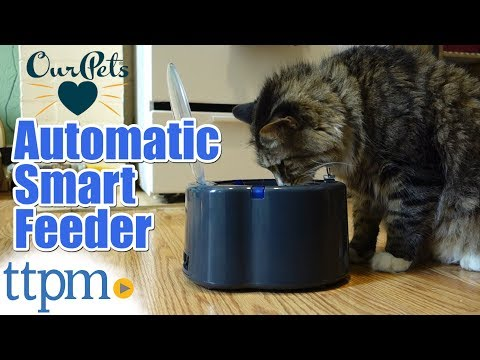 The Smartlink Feeder: Intelligent Pet Bowl From Our Pets