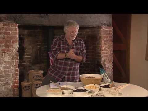 Welcome to Bill Oddies Bird Food Recipes