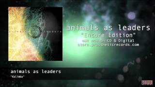 "Animals As Leaders - ""Kalimba"" Official Track Stream"