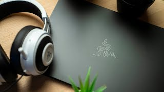 Razer Blade Stealth (2019) - The Almost Perfect Ultrabook!