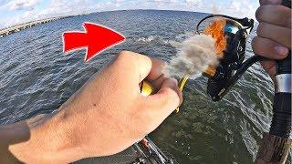 Kayak Fishing - This BIG FISH SMOKED MY REEL!!