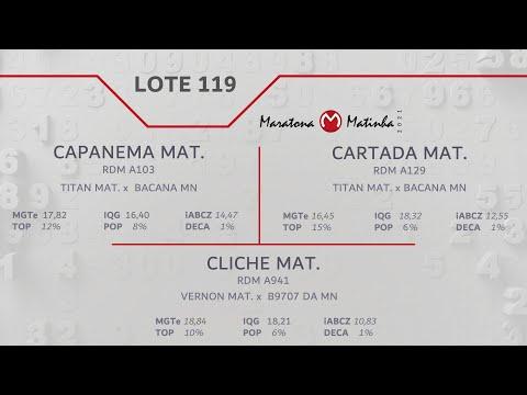 LOTE 119 Maratona Matinha