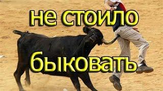 Best jokes Лучшие Приколы 2016 человек против быка