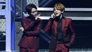 EXO - The star LIVE