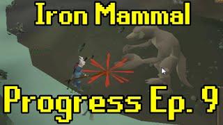 Oldschool Runescape - 2007 Iron Man Progress Ep. 9 | Iron Mammal