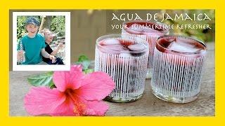 Agua De Jamaica: A Refreshing Hibiscus Punch