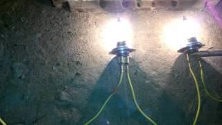 Эксперимент :) дхо: лампы в полнакала