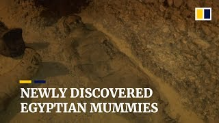 Mummies found in newly discovered tombs in Egypt