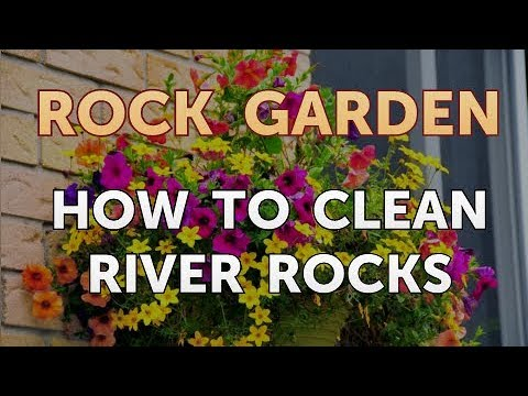 How to Clean River Rocks