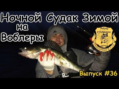 Ловля судака зимой на воблеры на Москве реке