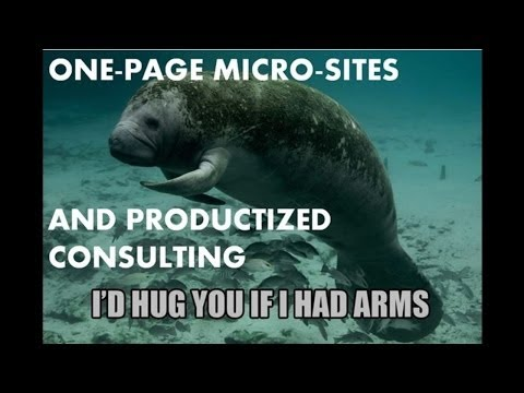 One Page Adsense Sites and Productized Consulting