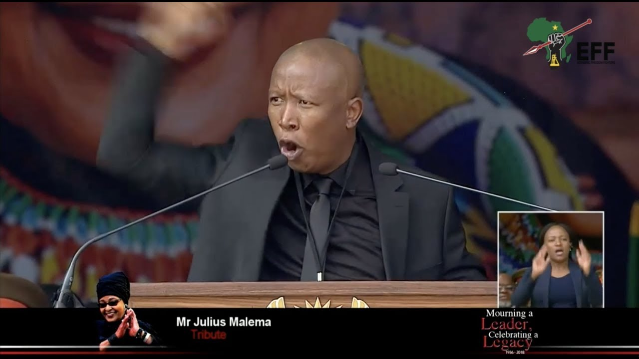 Image result for joseph malema
