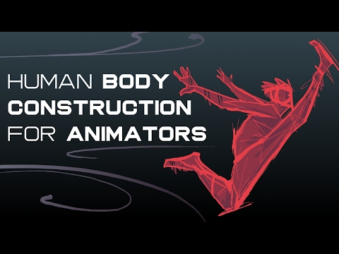 How To Construct The Human Body - For Animators