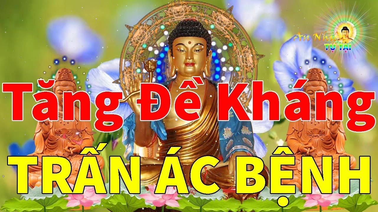 Kinh Phật Điều Phối Cơ Thể Chữa Lành Bệnh Nặng Dù Chỉ Nghe Nửa Giây Cũng Linh Nghiệm Vô Cùng