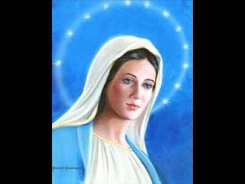 immacolata vergine bella(canto mariano) 2°versione