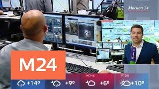 Смотреть видео Что сделано в Москве для болельщиков ЧМ-2018 - Москва 24 онлайн
