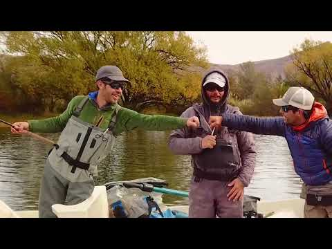 Limay River, Migratory Browns. Patagonia -Trout Bariloche