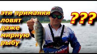 Супер ПРИМАНКА на хищника Ловит даже мирную рыбу Рыбалка на спиннинг летом в жару