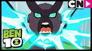 Ben 10 Français | Animorphose | Cartoon Network