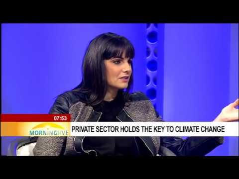 Private sector holds the key to climate change
