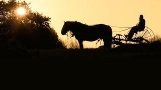 Trailer - Hästmannen - sista striden (HD)