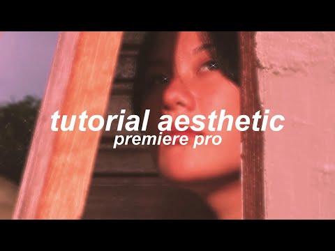 Tutorial Buat Video Aesthetic di Premiere Pro. - Bling TikTok Effect