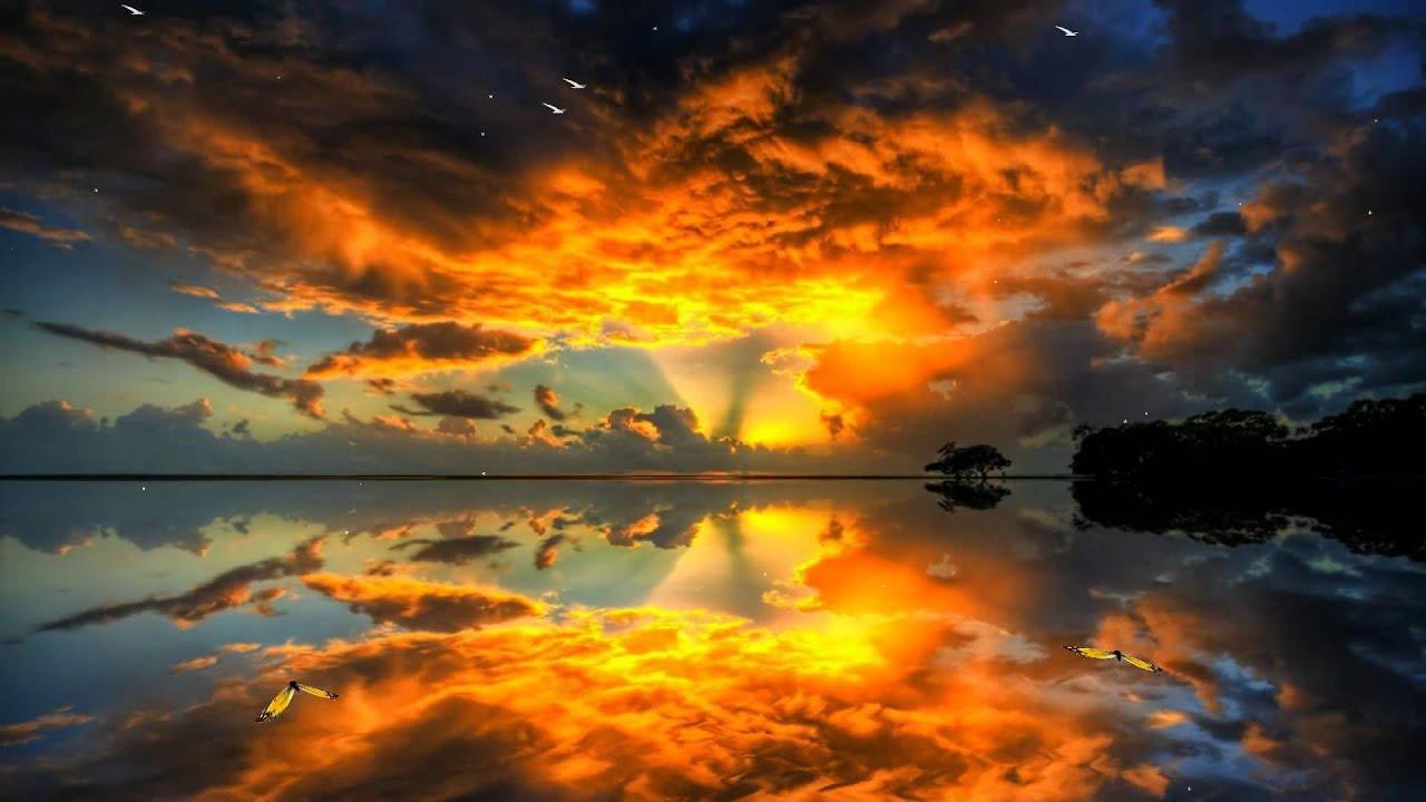 Beautiful Dawn Screensaver Http://www.screensavergift.com