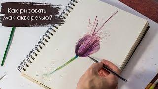 Как нарисовать цветы акварелью - Мак(Как рисовать акварелью цветы. Видео уроки по рисованию. В данном уроке нету закадровых объяснений по техник..., 2016-12-31T00:11:08.000Z)