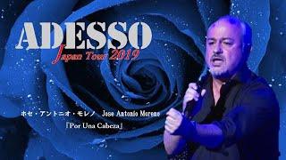 《Live》Jose Antonio Moreno「Por Una Cabeza」ーADESSO Japan Tour 2019