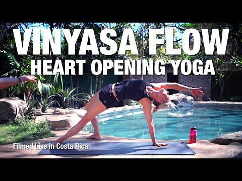 Heart Opening Yoga Class Five Parks Yoga