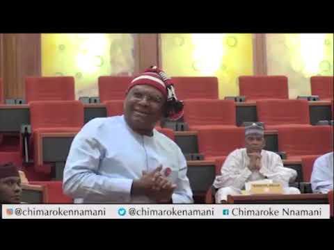 Chimaroke Nnamani Emerges As The Only Senator Opposing The Social Media Bill