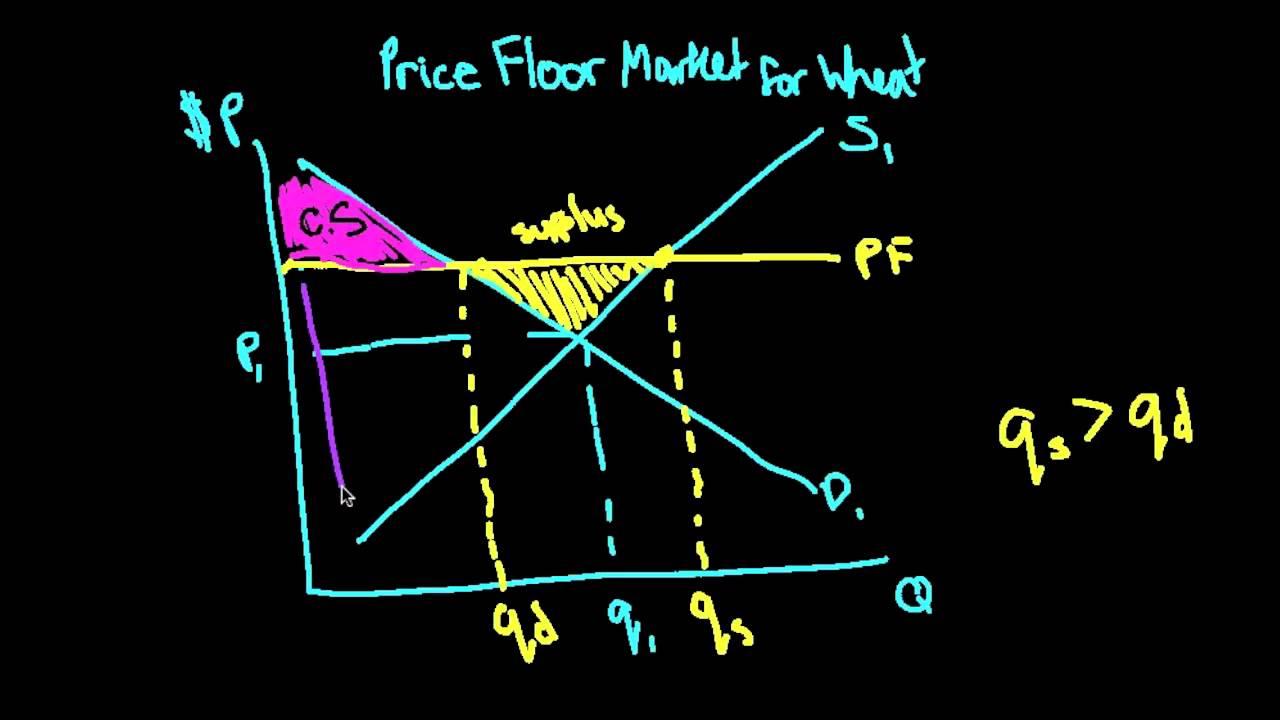 Price Floor (DWL, Consumer And Producer Surplus)