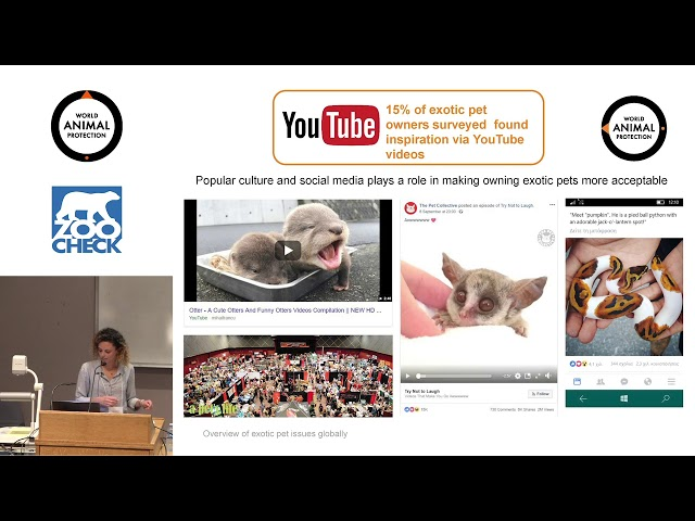 Overview of exotic pet issues globally: Problems, trends and emerging issues