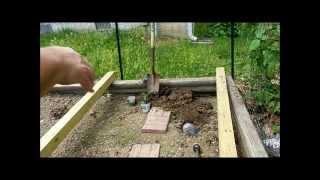 Gardening Tips for 2014