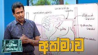 ITN Television Iskole - (2020-07-11) | ITN Thumbnail