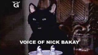Nick Bakay interviewed by Studio Kaiju...