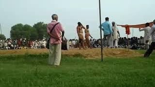मथुरा के अंकित पहलवान ने दिल्ली में दिखाई सानदार कुश्ती