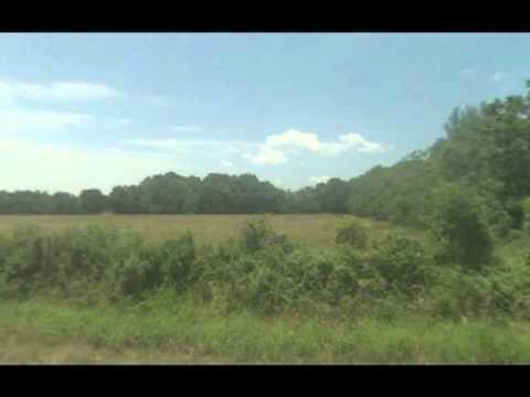 land for sale louisiana, buy land