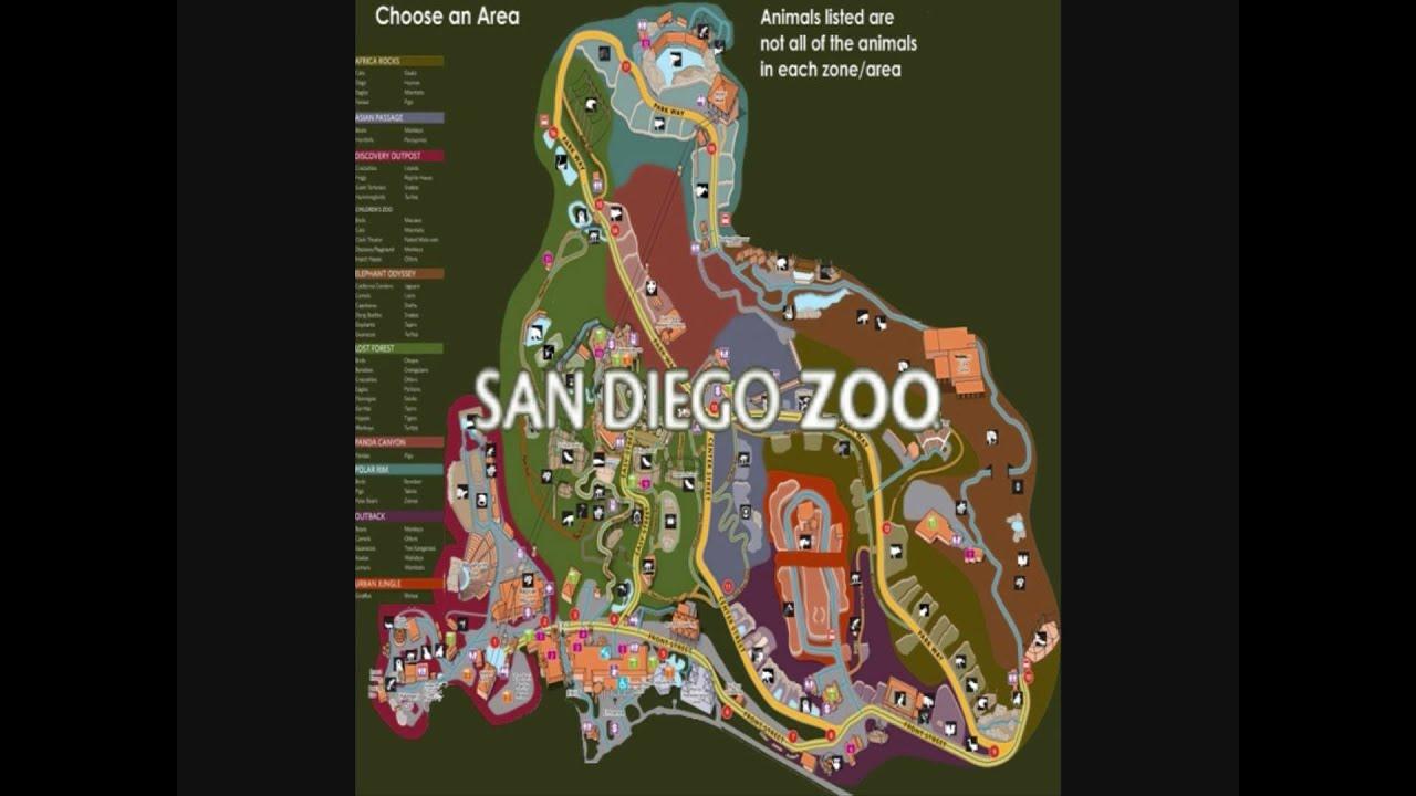 Interactive San Diego Zoo Map YouTube - San diego zoo map
