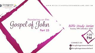 Livingpraise Weekly Bible Study // PONDERING ON THE GOSPEL OF JOHN 25