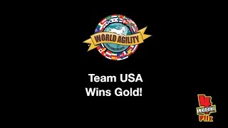 Team USA wins Gold at the 2016 World Agility Open Championships!