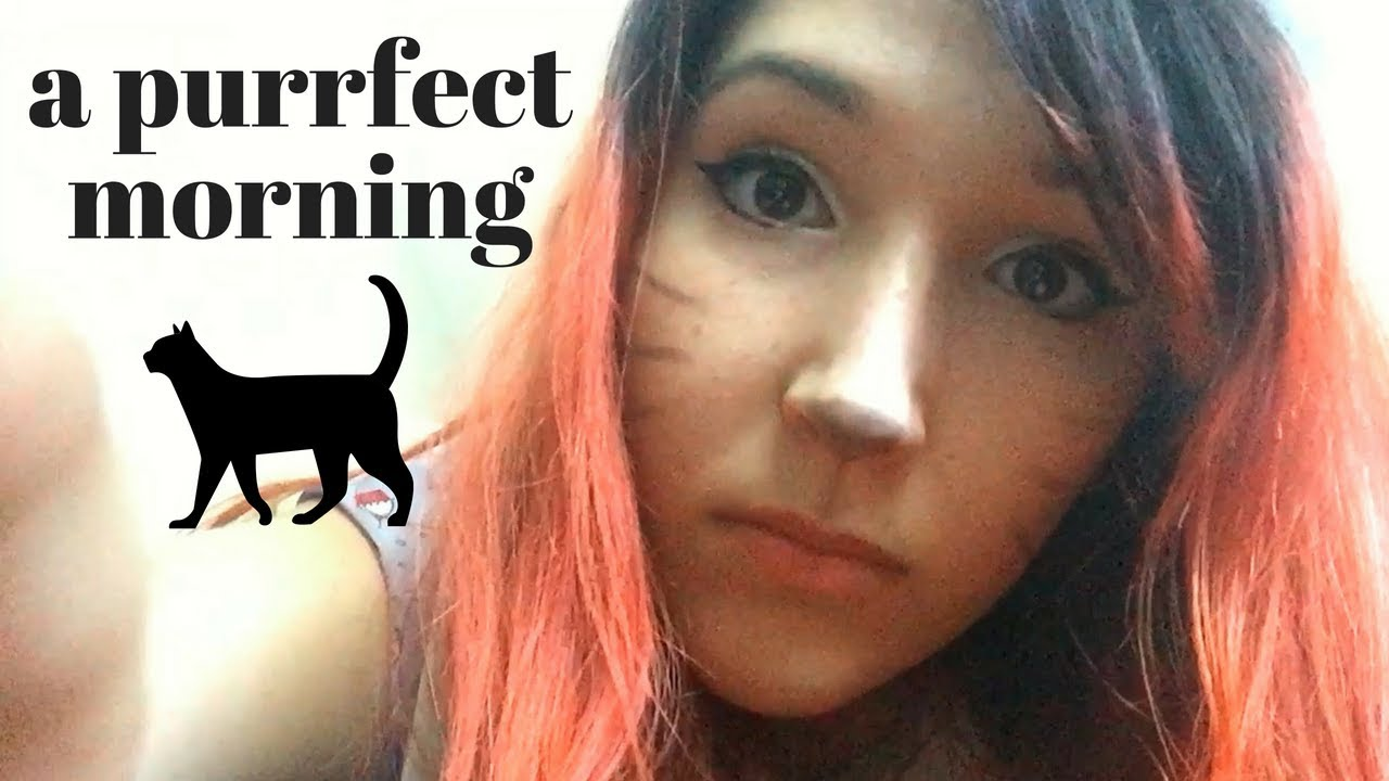 Low Fi Asmr Cat Roleplay Morning Kitty Snuggles Pestering Fabric Scratching Youtube