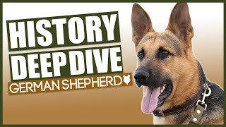 History Of The GERMAN SHEPHERD