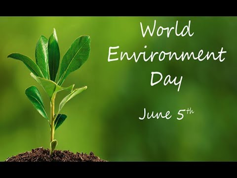 World Environment Day: How Animal Agriculture destroying Earth