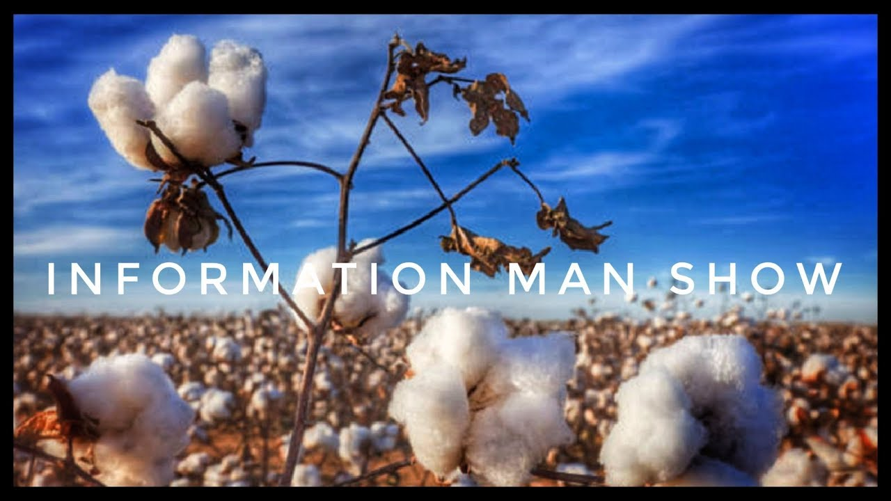 SOUTH CAROLINA SCHOOL TOLD TO PICK COTTON SING 'SLAVE SONG' ON FIELD TRIP