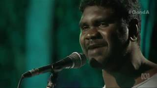 Yirrmal: Spirit of Place - Live on Q&A | 7 August 2017